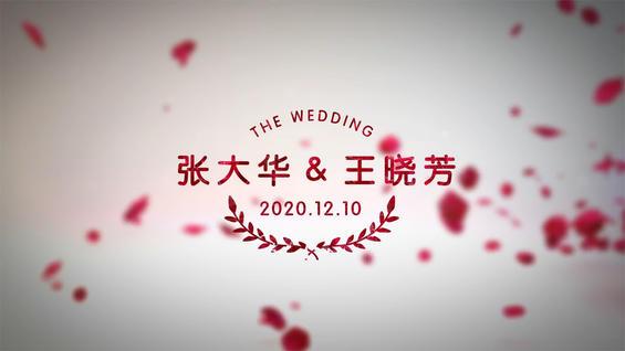 浪漫玫瑰风格,婚礼暖场必备