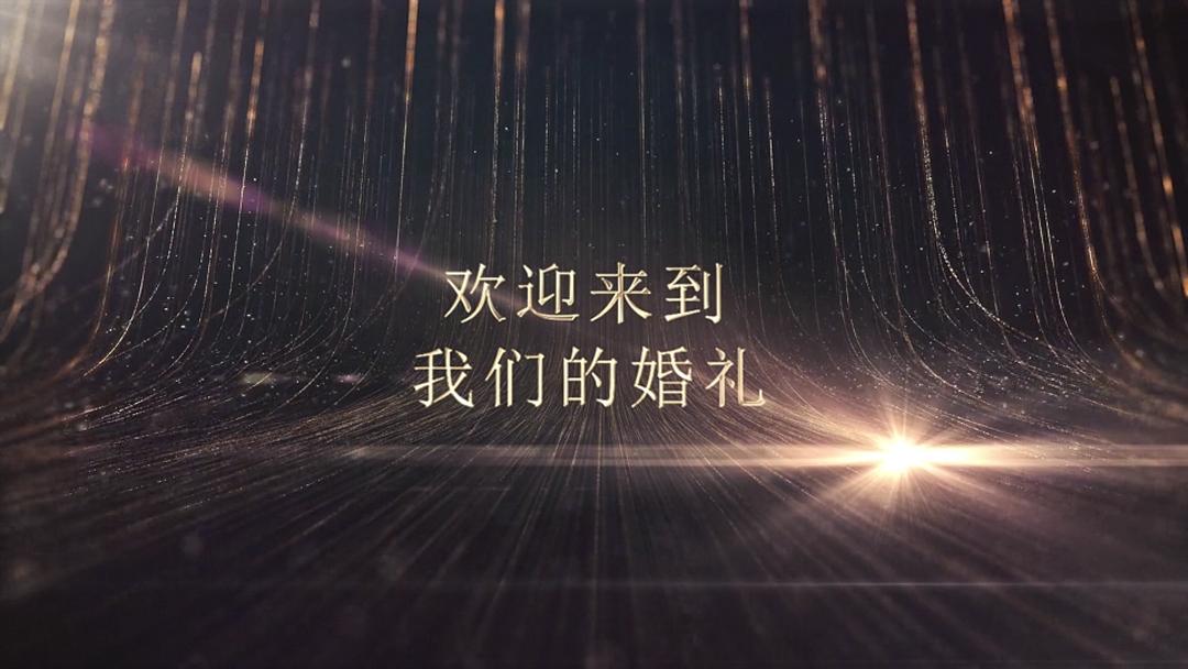 浮欢锦年结婚暖场视频mv模板